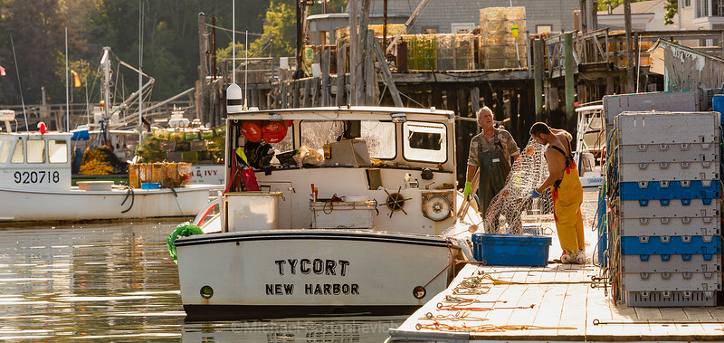 Classic New England Fisherman