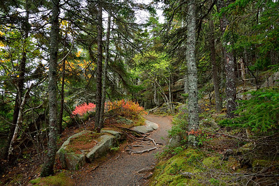 Autumn on Acadia's Trails