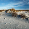 Quiet Dunes
