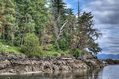 "Coast - Vancouver Island BC Canada Visit our blog ""The Toad Goes Coastal"" for the story behind the photo."