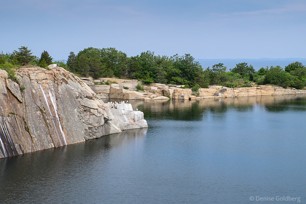 water filled quarry, at Halibut Point State Park