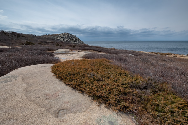 on the coast at Halibut Point State Park