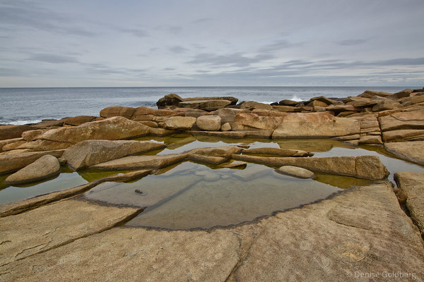 patterns in pools of water, Halibut Point State Park