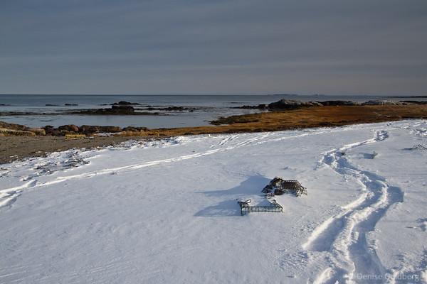 golden sea grass, a path through snow, a lobster trap