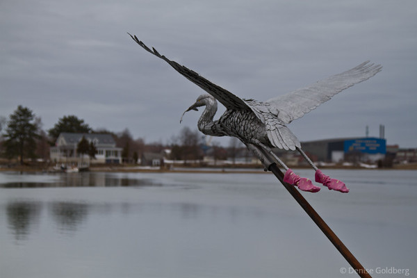 scultpure of a bird, wearing pink socks