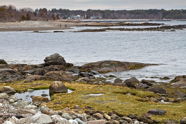rocky shoreline, Odiorne Point State Park, Rye, NH