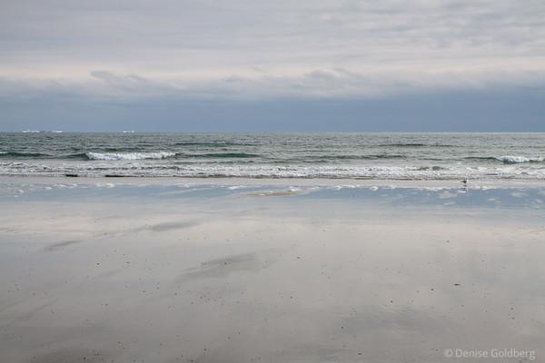 Coastal glimpses