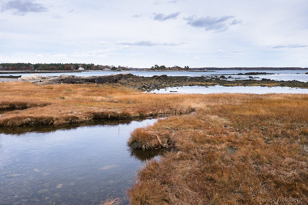 along the New Hampshire coast, in Odiorne Point State Park