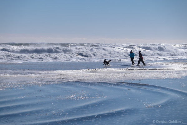 two women and two dogs walking too close to the waves