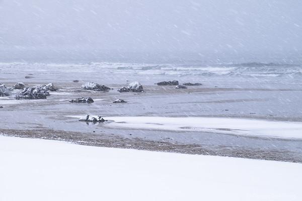 snow storm, Hampton Beach, NH