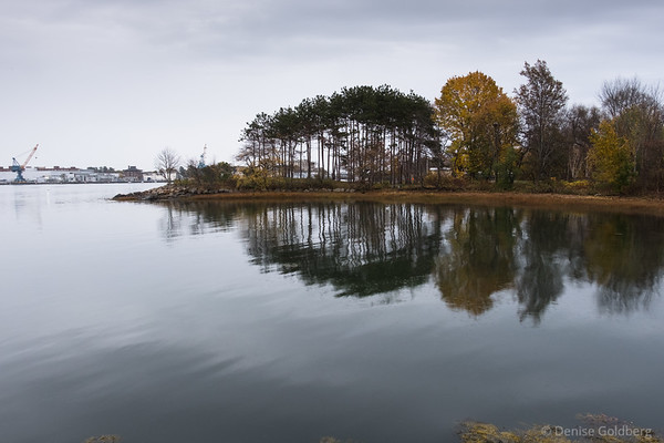reflections in inland waters, Portsmouth, NH