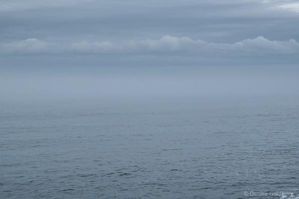 along the New Hampshire coast