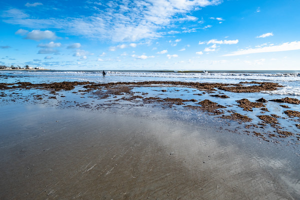low tide at Jenness Beach