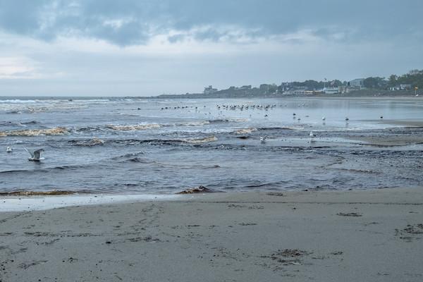 at Jenness State Beach