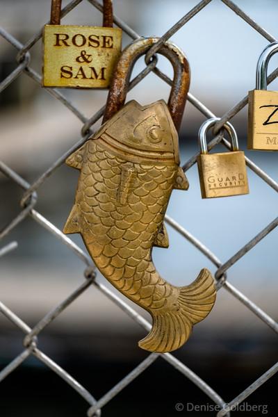 a padlock shaped like a fish