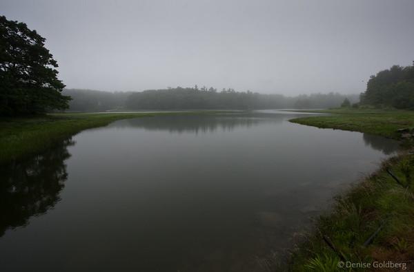 quiet, misty, reflections, Rachel Carson National Wildlife Refuge