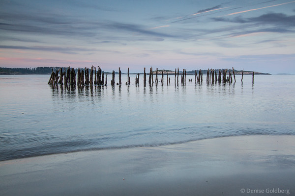 the blue hour, along the Phippsburg Peninsula, Maine