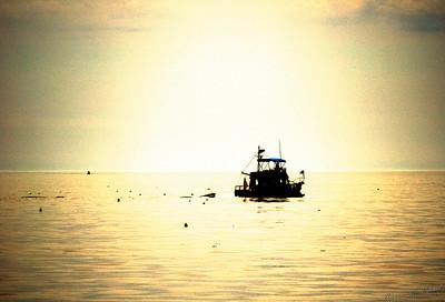 2005-07-30-3852 Silhouette