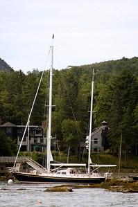 2005-07-30-3845
