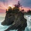 Enchanted Coast