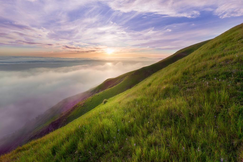 Big Sur Spring Green
