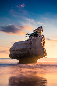 Ocean Rock Sunrise, Cathedral Cove, NZ