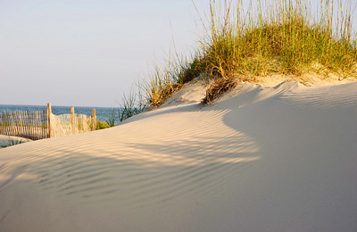 dune, fence, and the Atlantic Ocean