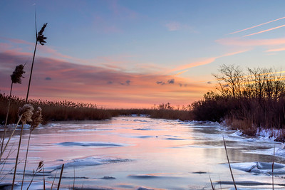 A Frigid Dawn at Bombay Hook National Wildlife Refuge
