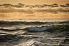 Ocean Palette