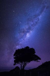 Te Arai Point Milky Way