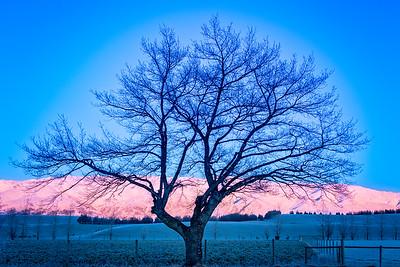 Winter Sunrise, Otago