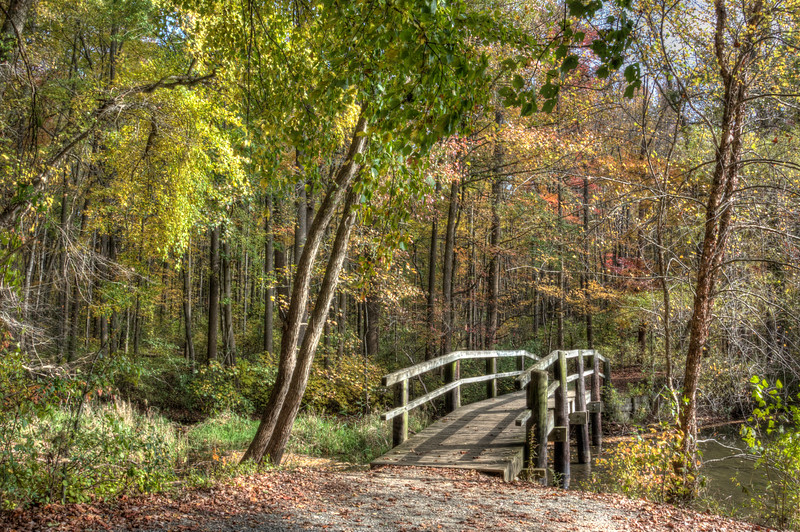 Wooden Bridge at Lum's Pond State Park, Bear Delaware