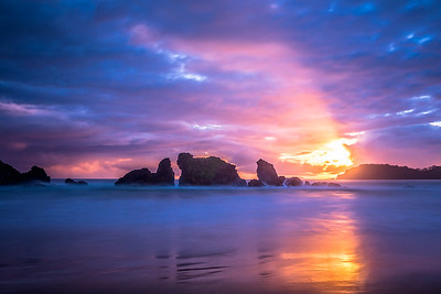 Morning Has Broken, Woolleys Bay, Tutukaka Coast