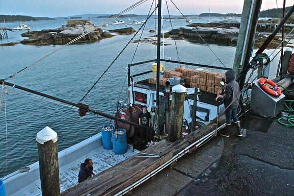 15.09.19 Stonington - Working Harbor at Sunset
