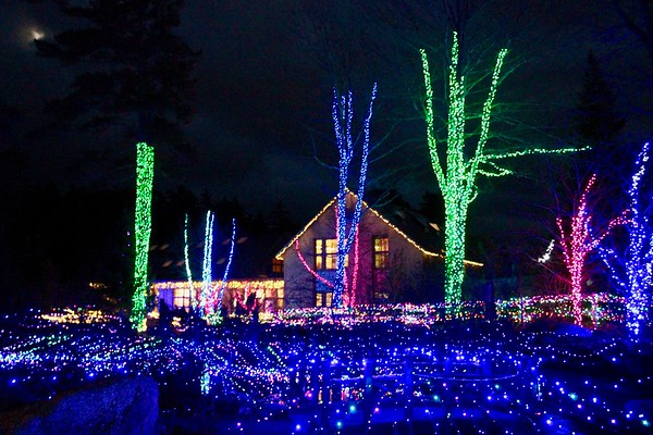 17.11.30 Gardens Aglow at Coastal Maine Botanical Gardens