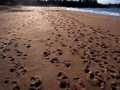 Sandy Beach w