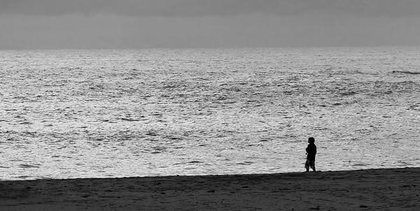 Beach Wanderer w