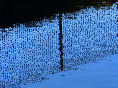 Fence Reflection w