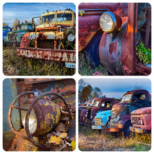 Taken at the truck graveyard in Virginia. Loved the colorful rust