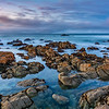 Rock Shore at Pacific Grove