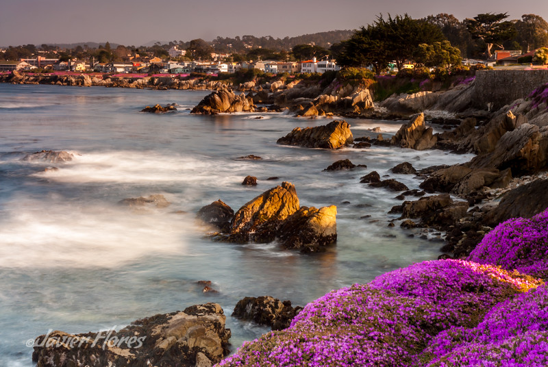 Pacific Grove California Coast