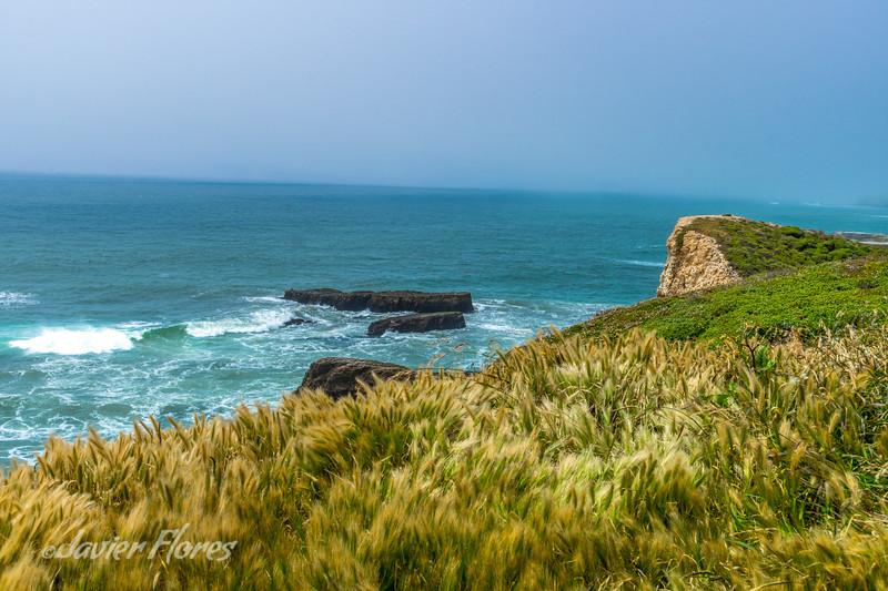 Coastline near Davenport Ca.