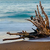 Driftwood on Kirby Cove