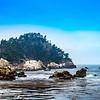 Point Lobos Coastline