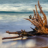 Kirby Cove Beach Driftwood