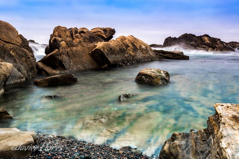 Tide Pools, Weston Beach
