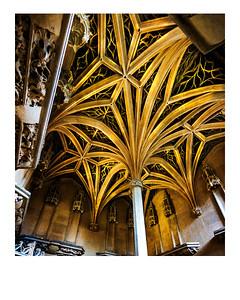 20170813-Fahey- Paris Church Ceiling Bones And Veins