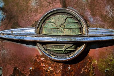 Mark Chandler - Old Car City (4)