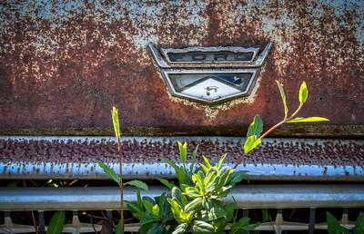 Mark Chandler - Old Car City (6)