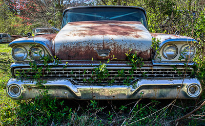 Mark Chandler - Old Car City (5)